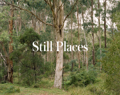 StillPlaces